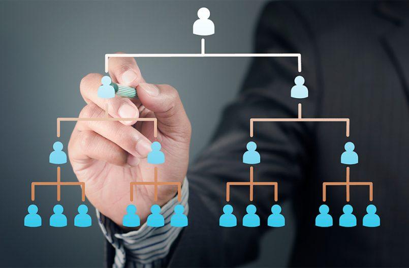 Executive drawing an organization chart